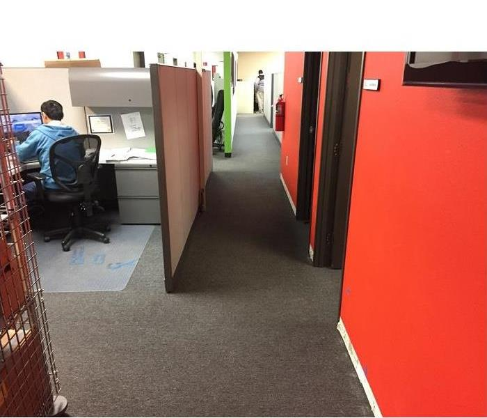 Office Flood in La Jolla After