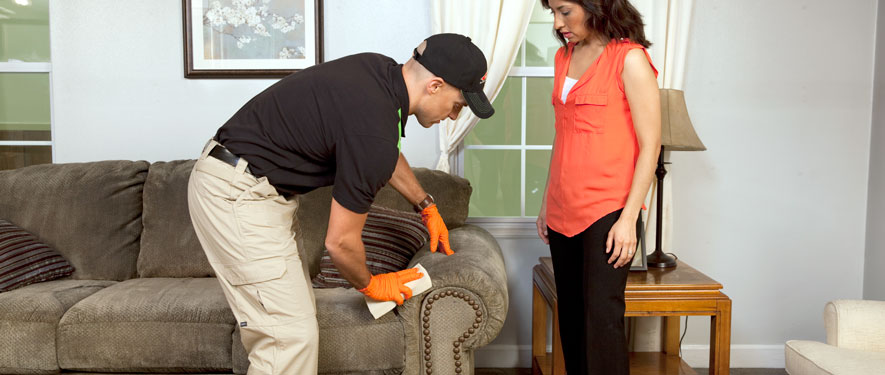 La Jolla, CA carpet upholstery cleaning